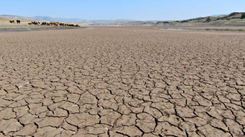 Kuraklık alarmı! Suların çekildiği baraj alarm veriyor