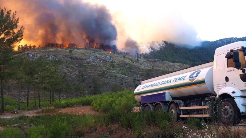 Osmangazi Ekipleri Yangın Bölgesinde
