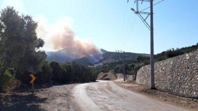 Bursa'da iki orman yangını birden