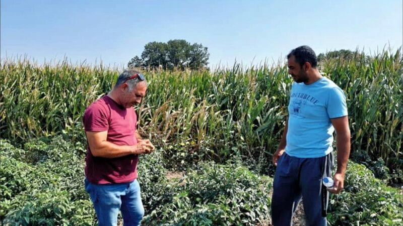 Bursalı çiftçilere eğitim!