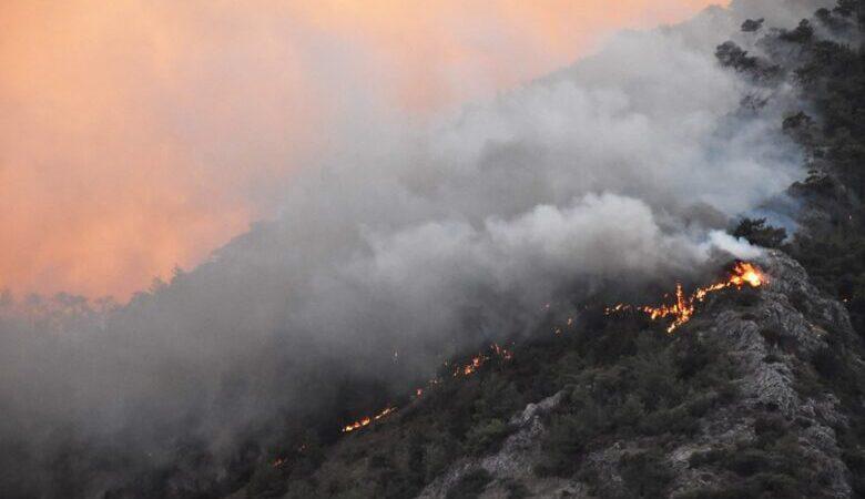 Orman yangınlarında son durum! AFAD'dan açıklama