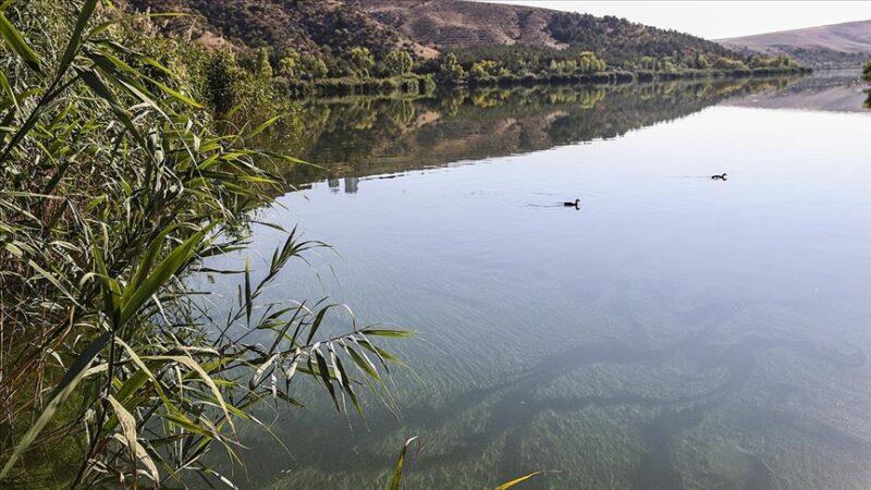 ODTÜ'den 'Eymir Gölü' açıklaması