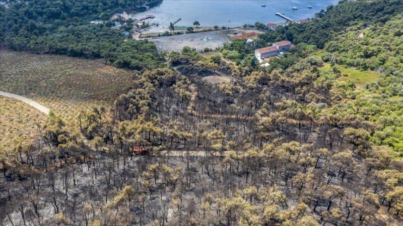 Heybeliada'da yangın nedeniyle zarar gören alan havadan görüntülendi