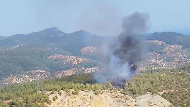 Bodrum'da orman yangını! Havadan ve karadan müdahale ediliyor