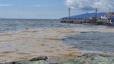 Marmara'da oksijen azalıyor! Korkutan Gemlik Körfezi açıklaması