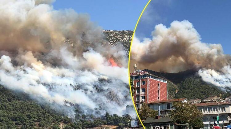 Hatay Antakya'da orman yangını
