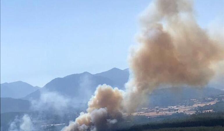 Antalya'nın Kaş ilçesinde orman yangını!