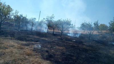 Bursa'da köyde korkutan yangın