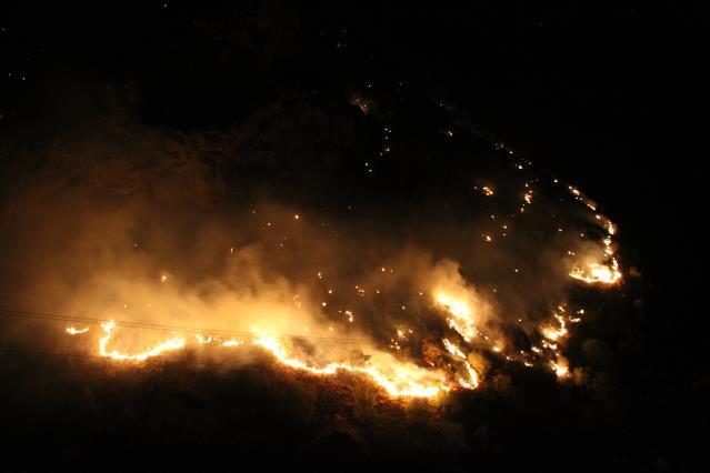 Son dakika orman yangını! Ekipler müdahale ediyor