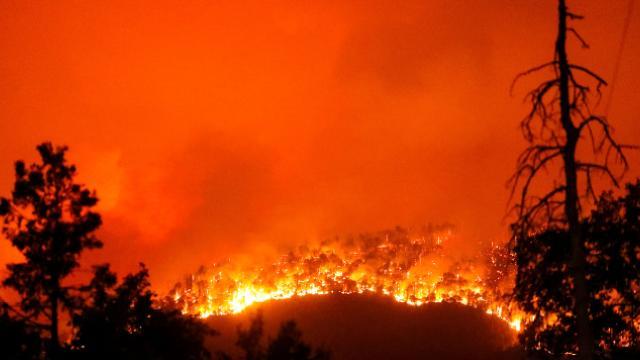 İran'da yangın! 200 hektar ormanlık alan zarar gördü