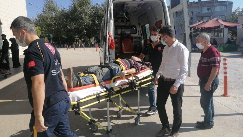 Bursa'da yaşlı adam ceviz ağacının kurbanı oluyordu