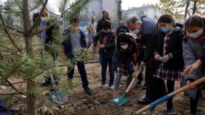 İnegöl'de 63 ağaç toprakla buluştu