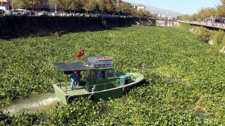 Burası Asi Nehri! Hatay'dan şaşırtan fotoğraflar