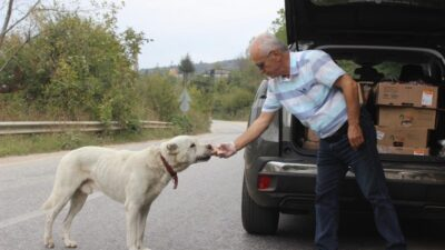 Uludağ'daki aç hayvanların babasından duygusal veda