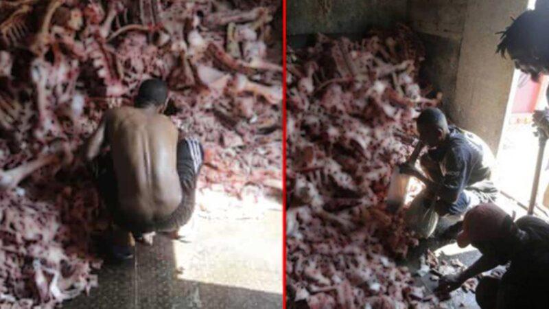 İnsanlar hayvan leşlerine hücum etti! Çekilen fotoğraf dünyayı ayağa kaldırdı