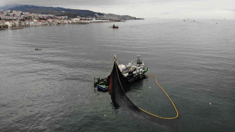 Gemlik Körfezi'ne giren 600 ton hamsiyi saatler içinde yakaladılar