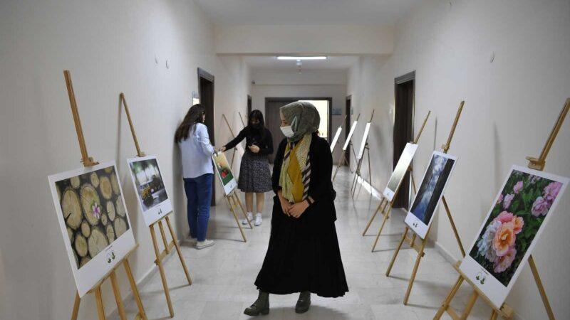 Kursiyerler fotoğraflarını sergiledi